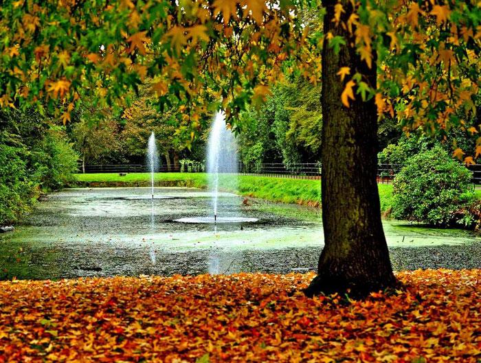 Croxteth-Park